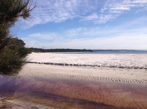 Jervis Bay Grass Patch Beach